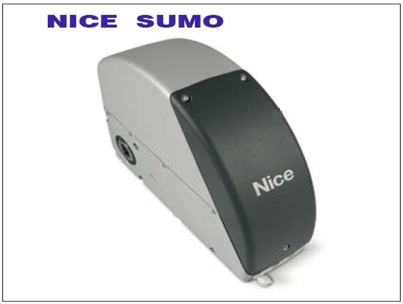 Nice Sumo