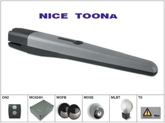 Nice Toona